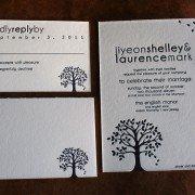 Weddings | Shelley & Laurence