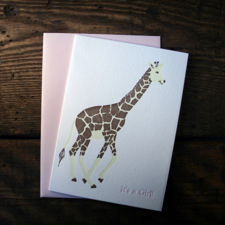 """It's a Girl!"" Giraffe"
