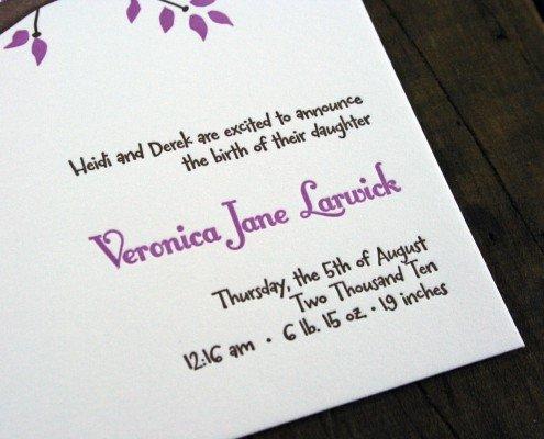 Birth Announcement for Veronica Larwick